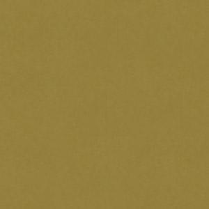 PAPAGO ΧΑΚΙ(100 φύλλα)