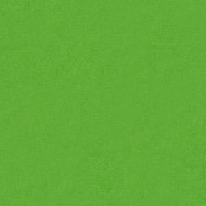PAPAGO ΛΑΧΑΝΙ(100 φύλλα)