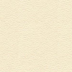 ALEZAN WILD ΝΤΑΙΜ (100 φύλλα)