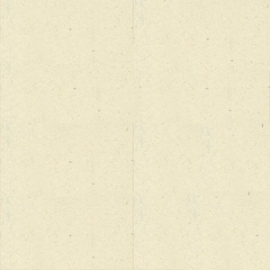 ΑΝΑΚΥΚΛΩΜΕΝΟ ΥΠΟΛΕΥΚΟ (100 φύλλα)
