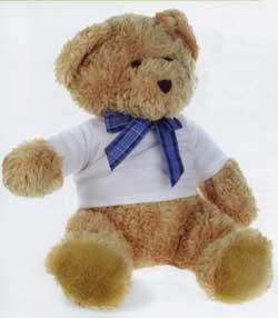 Αρκουδάκι με μπλουζάκι